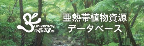 亜熱帯植物資源データベース
